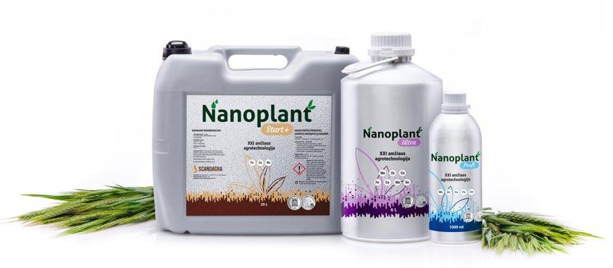 nanoplant-kompozicija